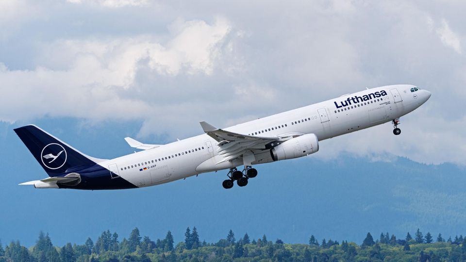 Ein Airbus A330 der Lufthansa