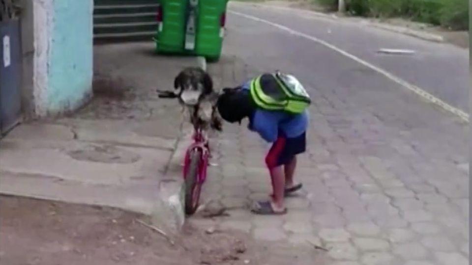 Ecuador: Junge fährt Fahrrad mit seinem Hund und checkt genau, ob die Maske richtig sitzt