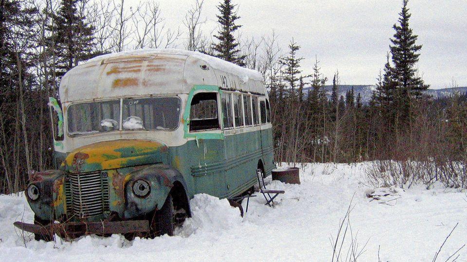 """Into the wild""-Bus"