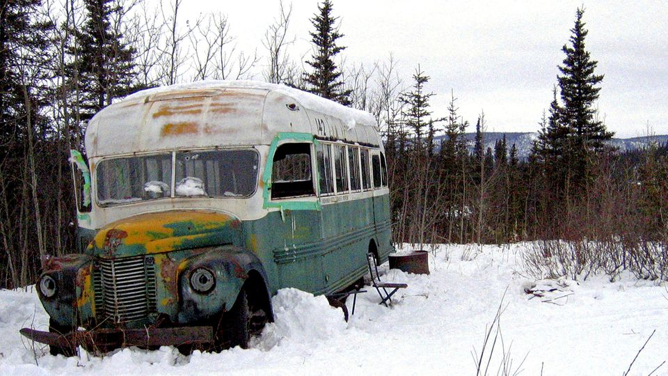 """Into the wild""-Bus"