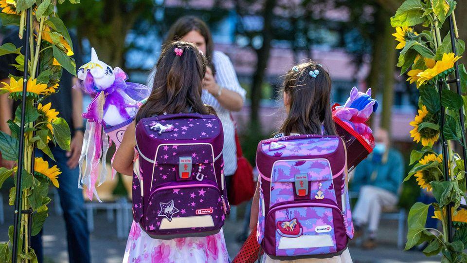 Schule Coronavirus: Virologen veröffentlichen Stellungnahme
