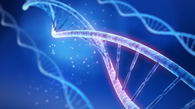27 Gene wurden umbenannt, um Fehler in Excel zu vermeiden.