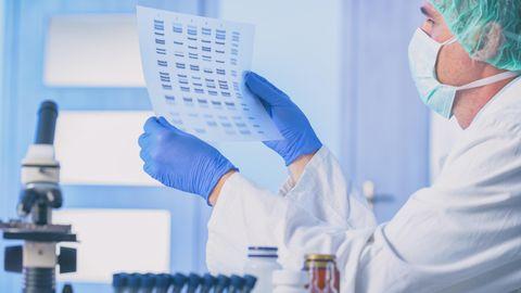 Microsoft-Programm: Wissenschaftler benennen wegen Excel-Fehler 27 menschliche Gene um