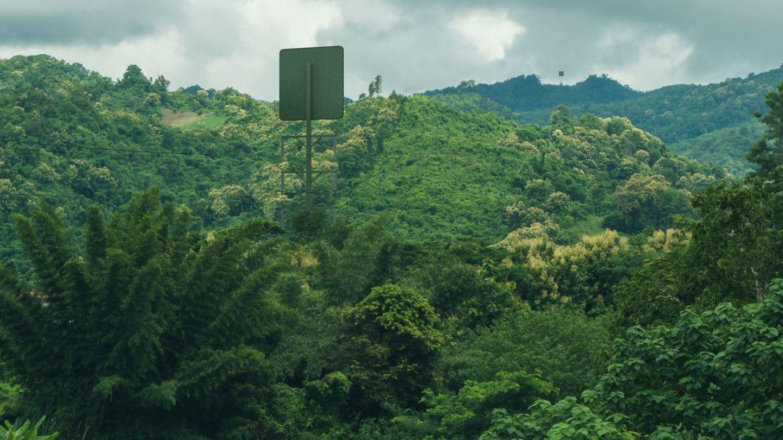 Für den drahtlosen Energietransport muss keine Schneise durch den Wald geschlagen werden.