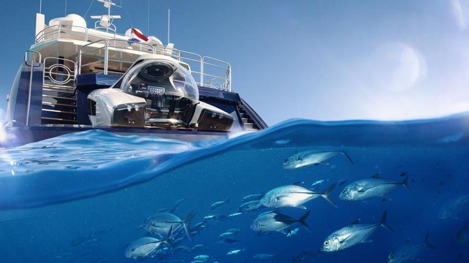 """Der Piolt muss die """"Nemo"""" nur mit einem Controller steuern. Die Trimmung geschieht automatisch."""