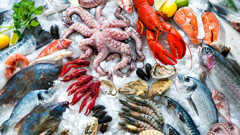 Mikroplastik in Meeresfrüchten: Fische und Muscheln liegen zur Kühlung auf Eis