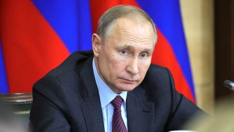 Ohne eine Anweisung von Wladimir Putin würden seine Geheimdienste keinen Giftanschlag auf Alexej Nawalny verüben
