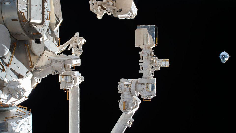 An der Außenseite der ISS: Bakterienklumpen überlebt drei Jahre im Weltall