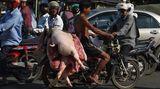 Phnom Penh, Kambodscha. Da stehen Lebensmittelkontrolleuren aus Europa die Haare zu Berge. Ein Mann fährt mit Schweinehälften auf dem Gepäckträger durch die überfüllten Straßen der Hauptstadt.