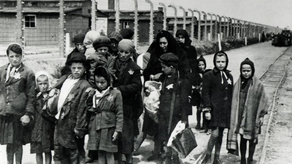Kriegserinnerungen: Die Geheimnisse der Frauen von Birkenau – eine Überlebende erzählt