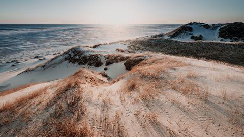 Atlantis der Nordsee: Doggerland war für die Menschen das Paradies der Steinzeit – bis ein Tsunami kam