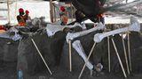 Zumpagno, Mexiko.Paläontologen des Nationalen Instituts für Anthropologie arbeiten an der Erhaltung der Skelette von Mammuts, die auf der Militärbasis Santa Lucia ausgegraben wurden. Arbeiter waren beim Bau desneuen Flughafens in Mexiko-Stadt auf die Überreste von hundert Mammuts und anderen prähistorischen Tieren gestoßen.