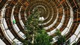"""Der Baumwipfelpfad mit seinem 42 Meter hohen """"Holzei"""" ist eine barrierefreie Attraktion, die auf 1300 Metern Länge den Wald für Besucher ganz nah heranrückt"""