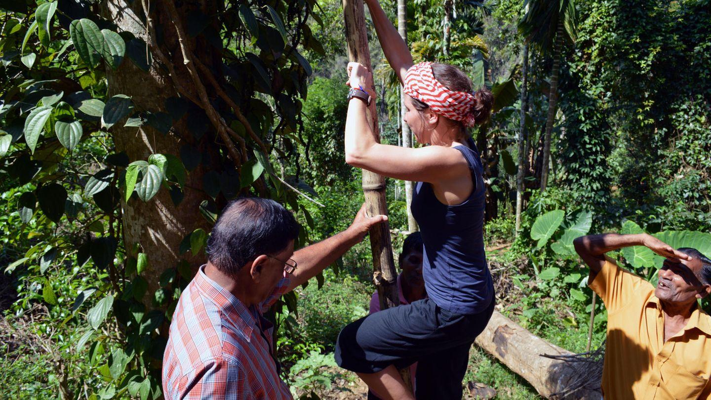 Anja Matthes bei der Pfefferernte