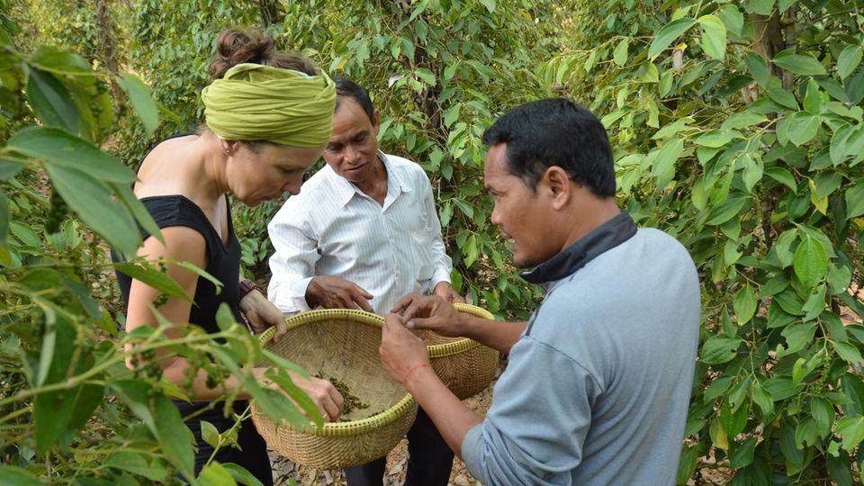 Anja Matthes in Kambodscha