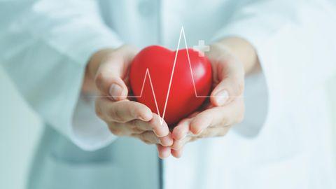 Gesundheit: Das Herz: So hilft die Medizin, unseren wichtigsten Muskel zu schützen. Und das können wir selbst tun