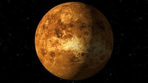 """Leben auf der Venus? Nasa spricht von """"bislang bedeutendster Entwicklung"""""""