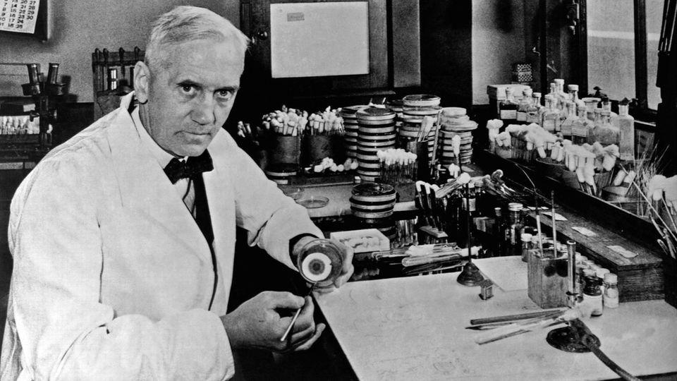 Der Bakteriologe und Penicillin-Erfinder Alexander Fleming in seinem Labor