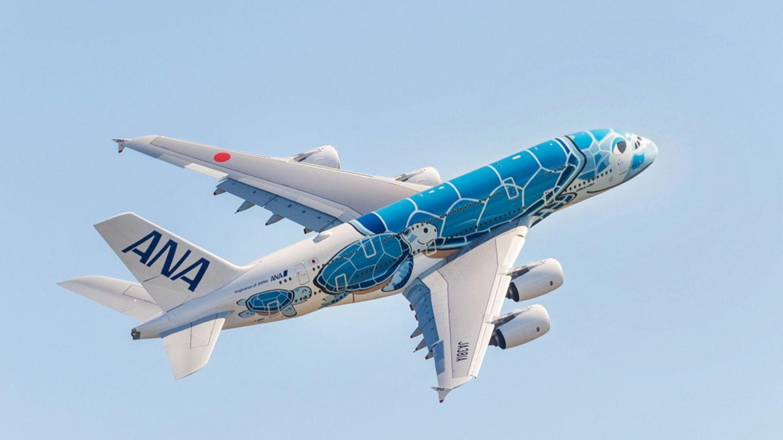 """Der Airbus A380 verkehrt bei All Nippon Airways eigentlichzwischen Japan und Honolulu. Jetzt stehen beide Exemplare am Boden. Doch damit die Jets mit der aufgemalten hawaiianischen Meeresschildkröte (Honu) nicht """"einrosten"""", unternehmen sie auch Testflüge mit zahlenden Passagieren, um fit für ihren Einsatz im Linienbetrieb zu bleiben."""