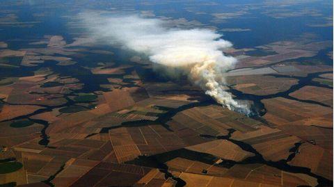 Das Archivbild zeigt ein brennende Sojabohnenfeld in der Nähe von Lucas do Rio Verde, in Mato Grosso, Brasilien.