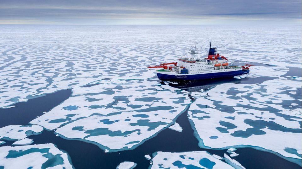 Das Forschungsschiff Polarstern
