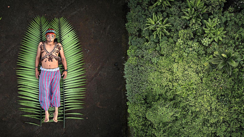 Links: Nantu; Rechts: Der Regenwald Ecuadors
