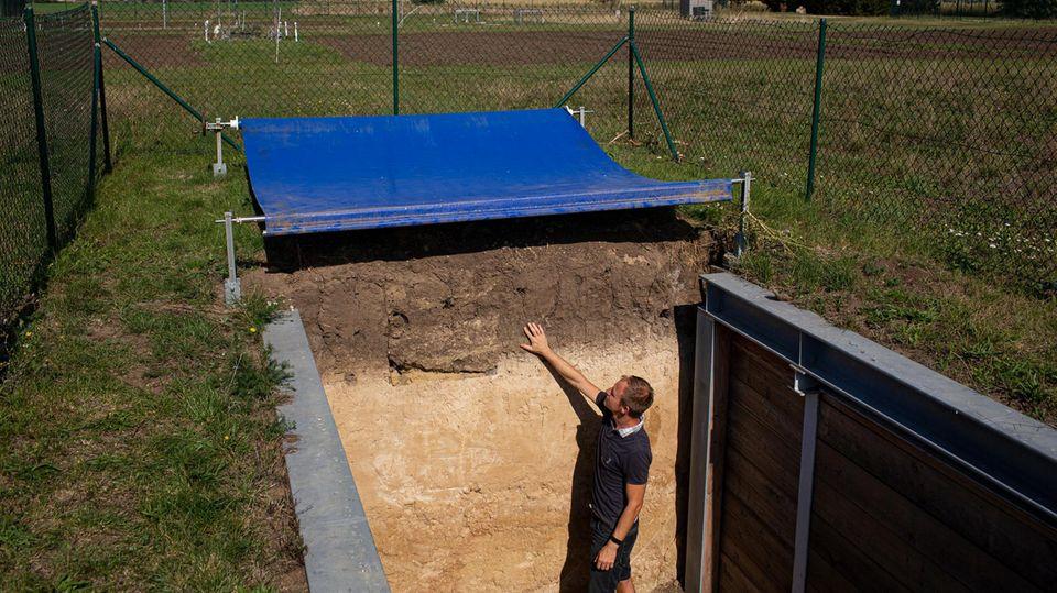 Dr. Thomas Reitz erklärt ein Bodenprofil