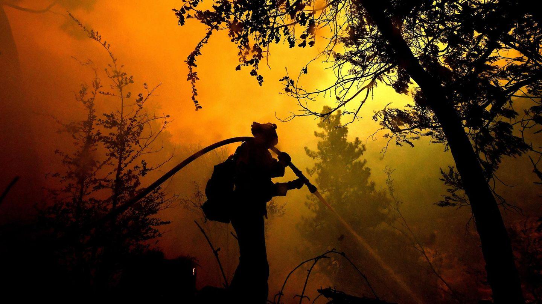 Klimawandel: Jetzt. Und hier. Die Klimakrise ist längst da. Was wir tun müssen, um uns zu retten