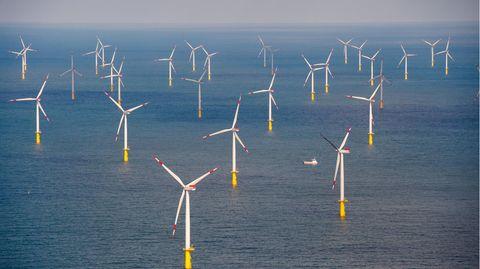 "Der Offshore-Windpark ""Butendiek"", etwa 30 Kilometer vor der Insel Sylt in der Nordsee"