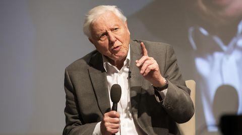 David Attenborough veröffentlicht erstes Video auf Instagram
