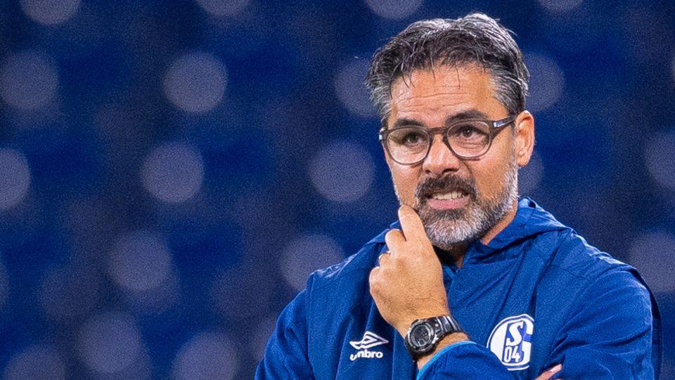 In blauer Trainingsjacke mit Logo des FC Schalke 04 steht David Wagner im Stadion und verzieht das Gesicht