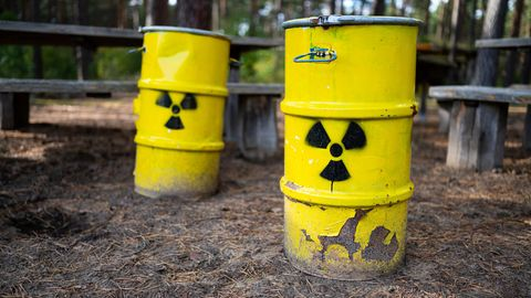 Symbolische Atommüllfässer stehen unweit vom ehemaligen Erkundungsbergwerk Gorleben im Wald