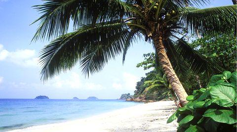 Insel Ko Chang:Thailands strikte Anti-Verleumdungsgesetze werden von Menschenrechtsaktivisten scharf kritisiert