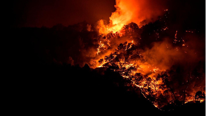 Brand im Napa Valley, Kalifornien