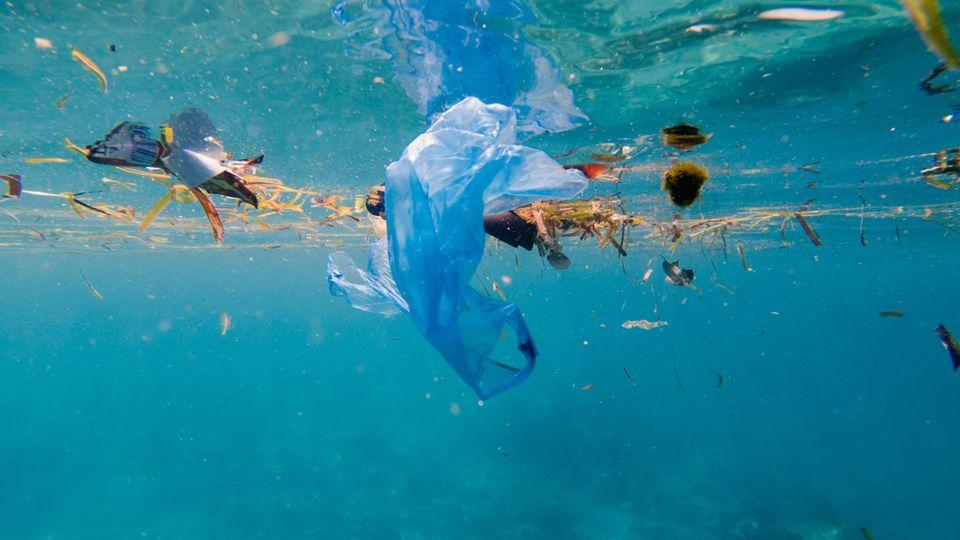 Für plastikfreie Meere bis 2050: Staatschefs geben Versprechen ab