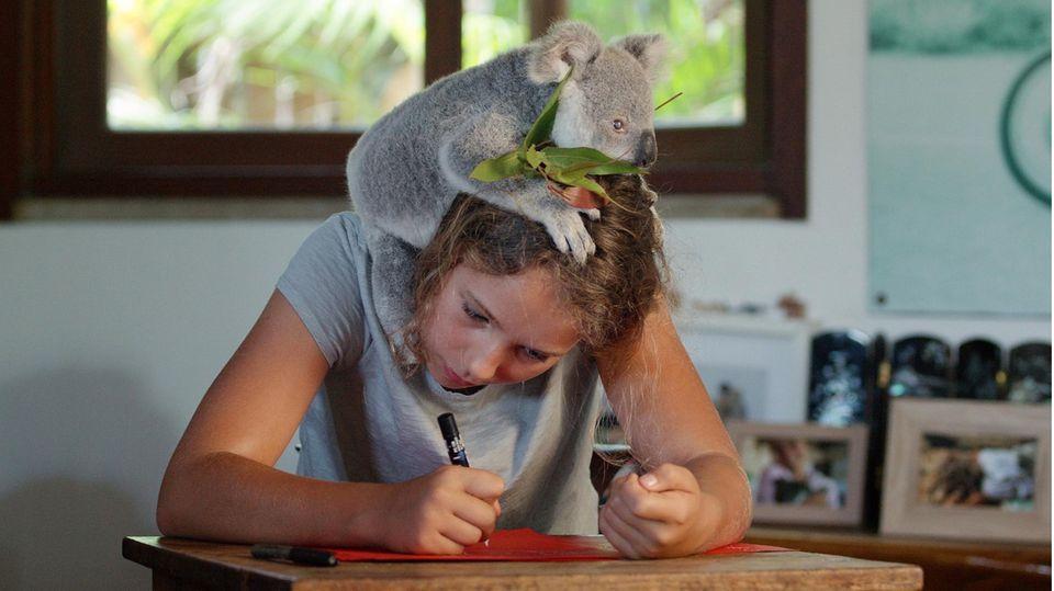 Izzy Bee, die Koala-Flüsterin