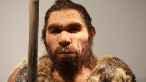 Die Nachbildung eines Neantertalers steht im Landesmuseum in Bonn
