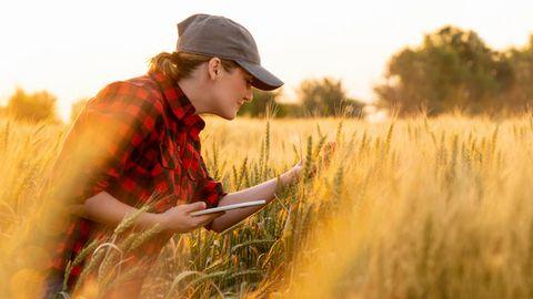 Die Diagnose: Sie kann kaum noch laufen – was hat das Getreide des Ökohofs damit zu tun?