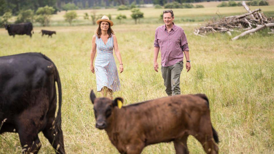 Eckart von Hirschhausen und Sarah Wiener stehen auf einer Weide mit Kühen