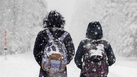 Zwei Kinder gehen eine verschneite Straße entlang. Es schneit und sie sind von hinten zu sehen