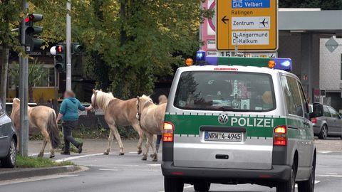 Nachrichten aus Deutschland – Düsseldorf