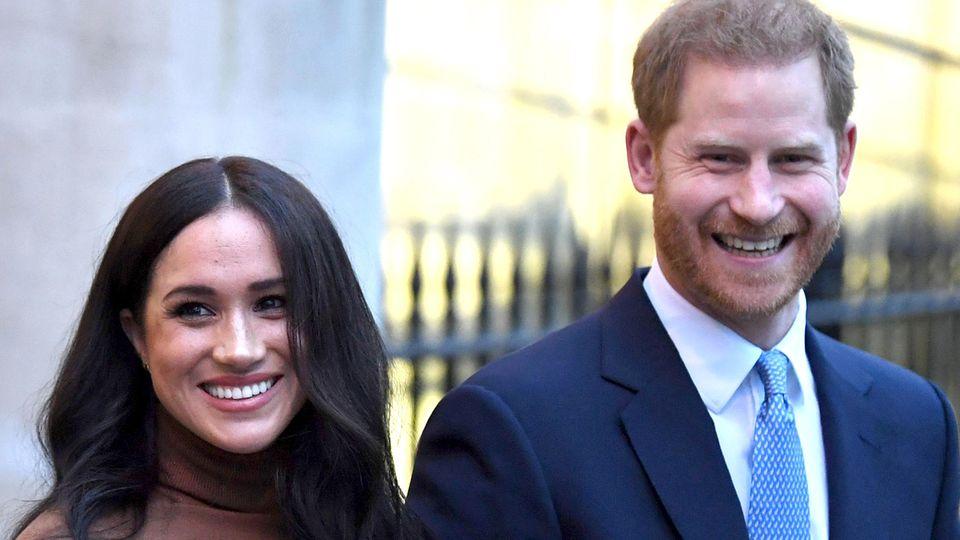 Erstes offizielles Porträt von Meghan und Harry