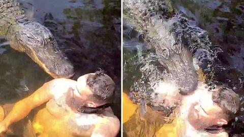 Everglades: Alligator schnappt nach Taucher