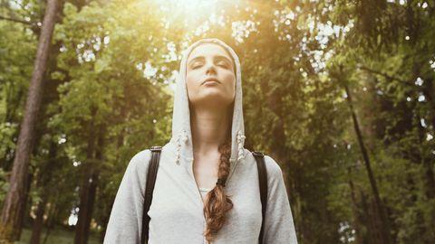 Frische Luft: Spazieren gehen im Wald tut dem Körper gut