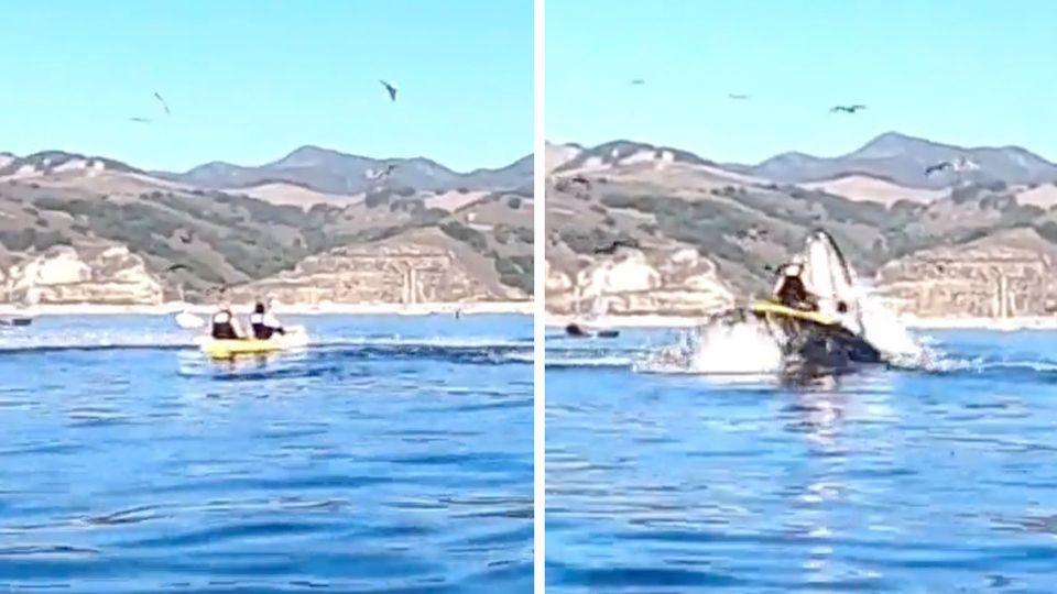 Kayakerinnen