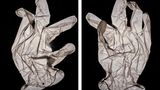Fotografie: Ein Schutzhandschuh in Nahaufnahme