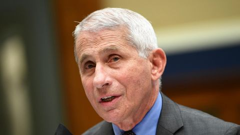 Anthony Fauci, Direktor des Nationalen Instituts für Infektionskrankheiten