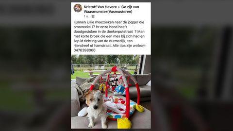 Facebook-Post des Besitzers des erstochenen Hundes in Belgien