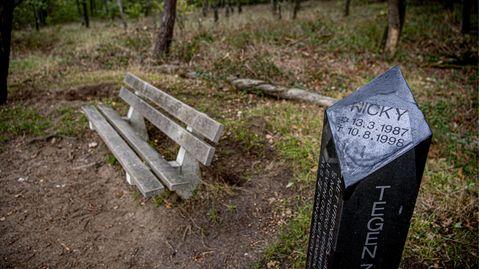 Das Denkmal für den getöteten Nicky auf der Brunssummerheide (Niederlande)