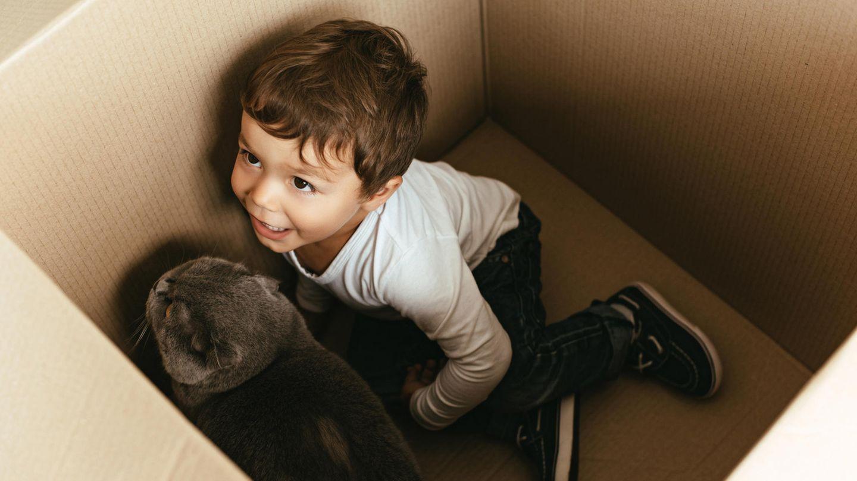 Ein kleiner Junge und eine Katze sitzen in einer Kiste